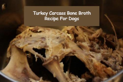 How To Make Turkey Carcass Bone Broth Recipe For Dogs