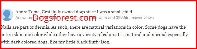 dog breeds with black nails