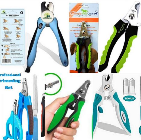Best Nail Clippers With Sensor For Dogs